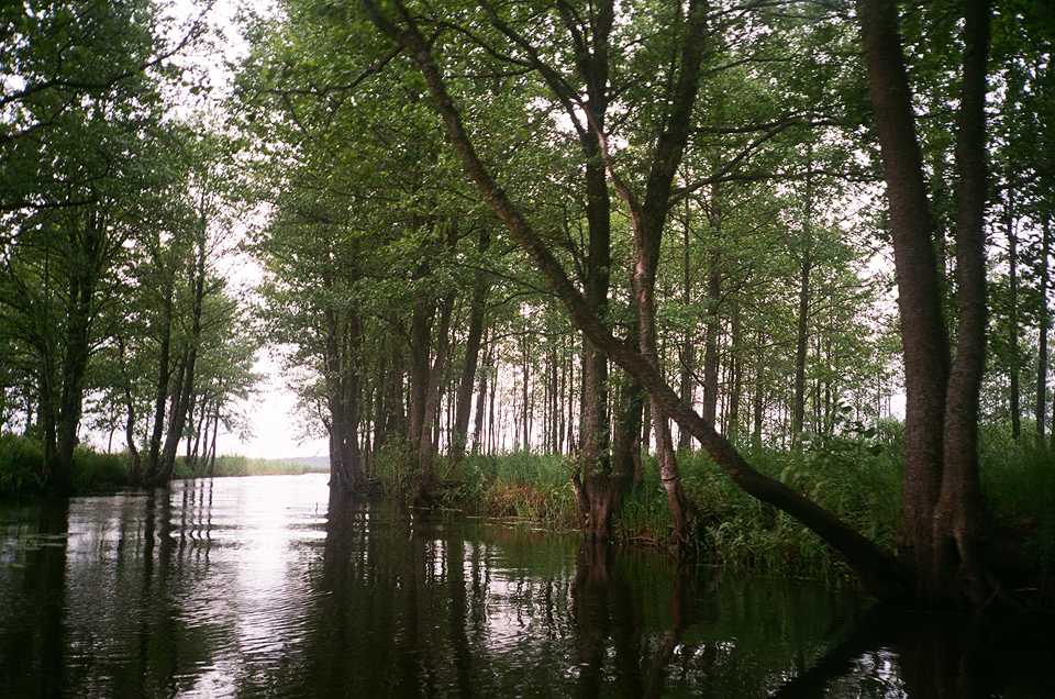 laivu brauciens: Engures upe – Puzes ezers – Rindas upe