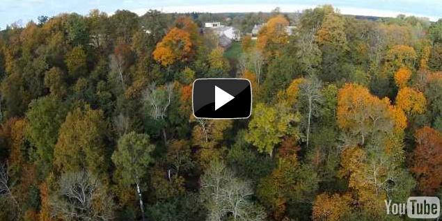 Screen Shot 2011-10-24 at 2.57.42 PM