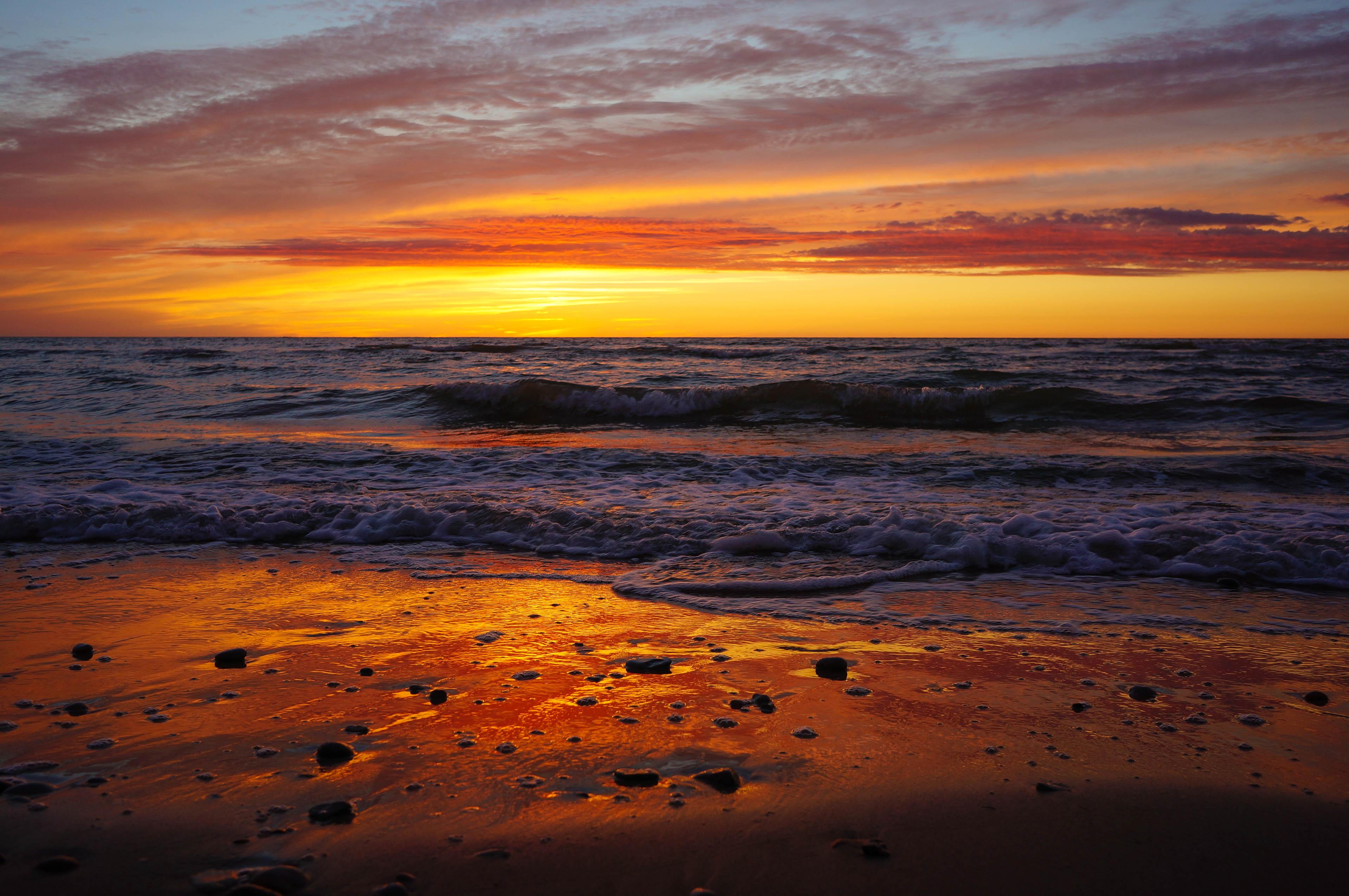 Trīs saulrieti pie Baltijas jūras