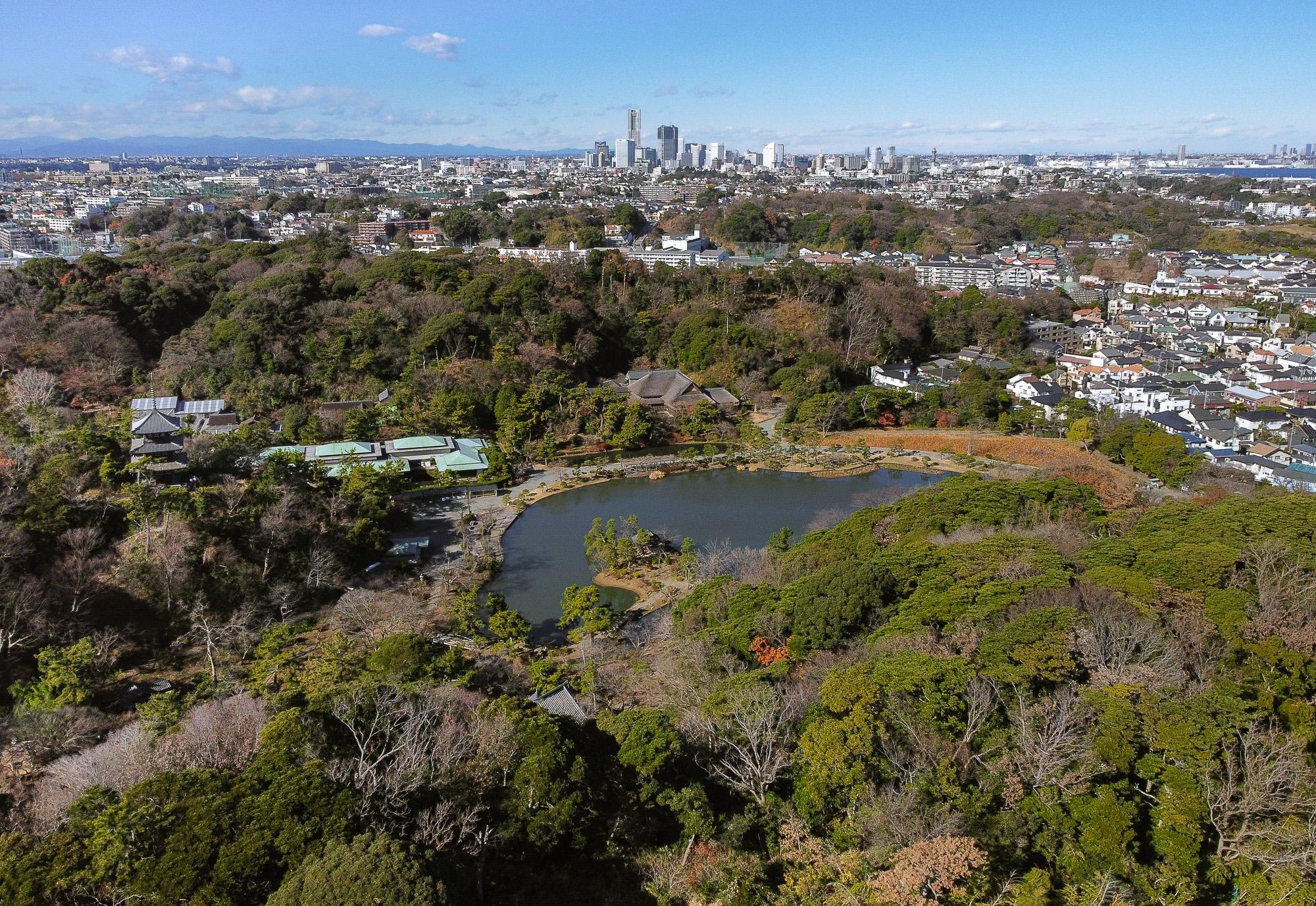 Mūsu mīļais tradicionālais japāņu dārzs - Sankeien. Tālāk vēl daži parki un pavisam tālāk Yokohamas centra debesskrāpji. Tie nemaz nav tik tālu. Reizi pa reizei nostaigājam visu to gabalu līdz pat mājām. Ar velo pavisam ātri.