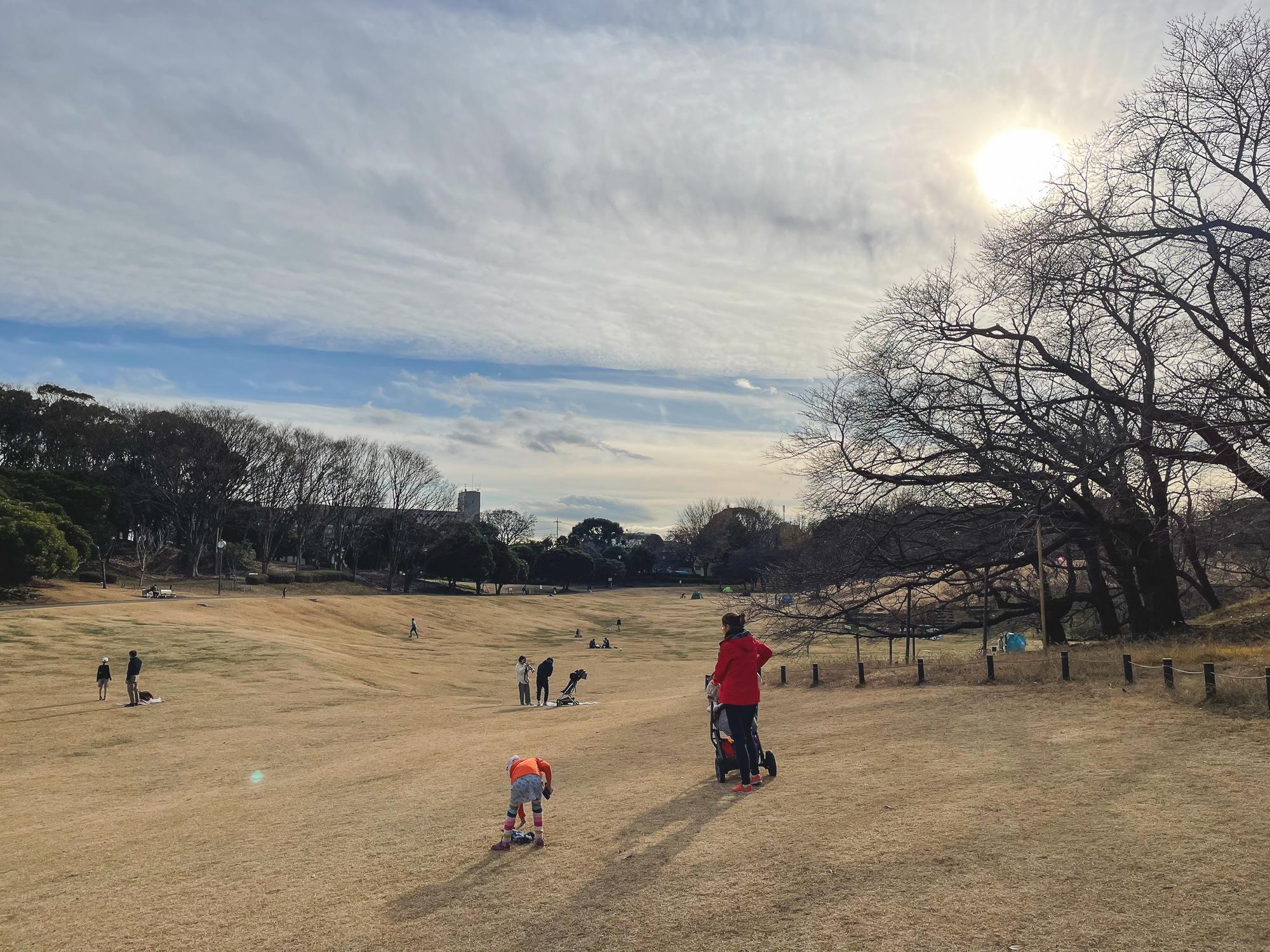 Ziemā parks ir itin dzeltens. Bet pavasarī zied sakuras un vasarā viss zālājs ir pilns ar ģimenēm, kas atpūšas, sporto un pikniko