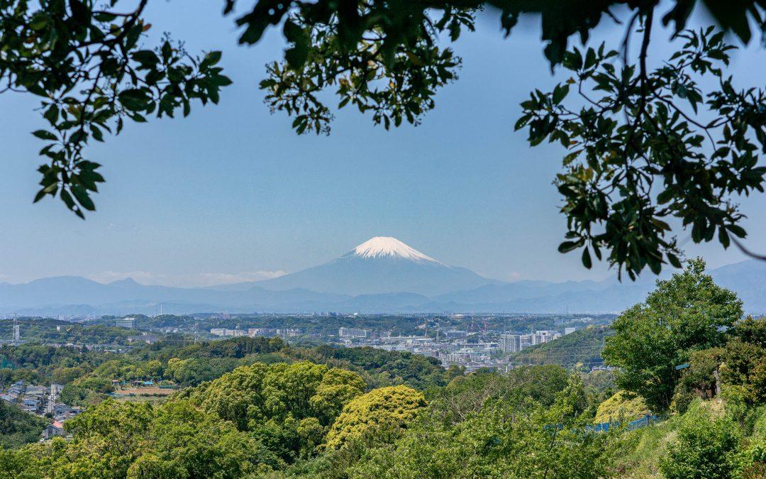 Konandai pastaiga ar skatu uz Fudzi vulkānu