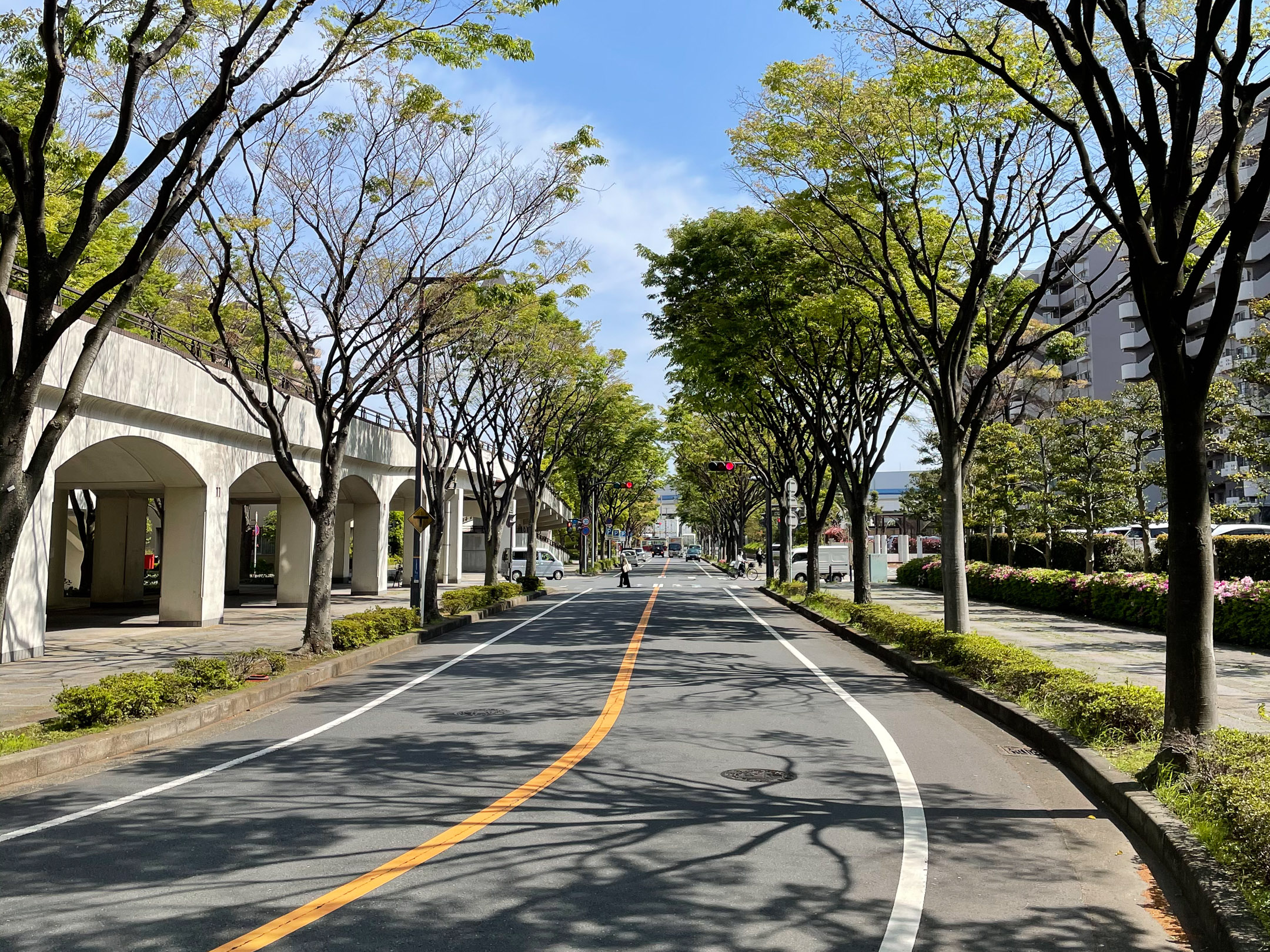 Zaļā piemājas iela