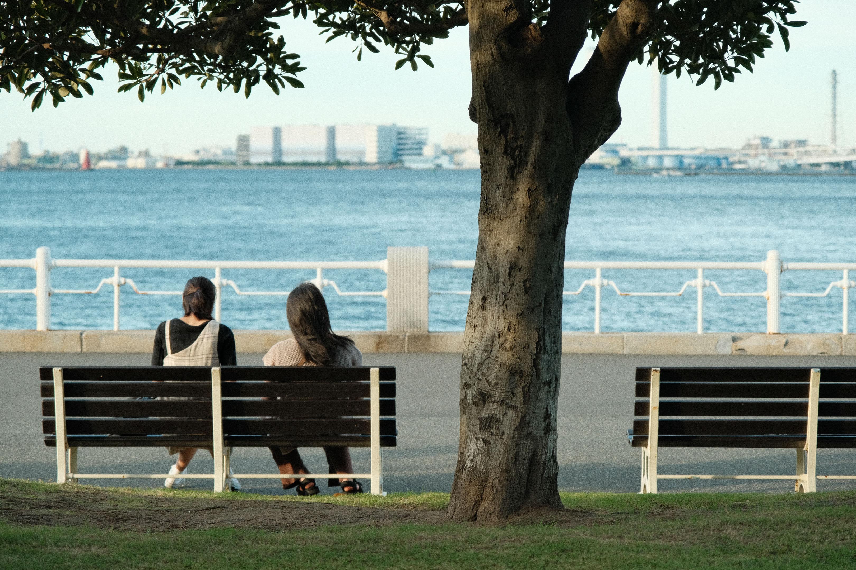 Yamashita parka soliņi